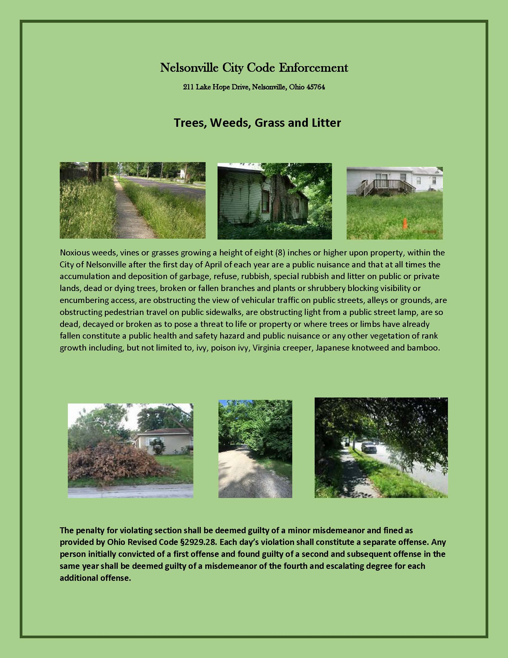Trees, Weeds, Grass and Litter Flyer - click for PDF
